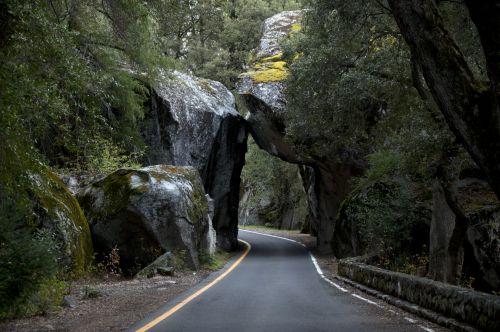 Yosemite Entrace