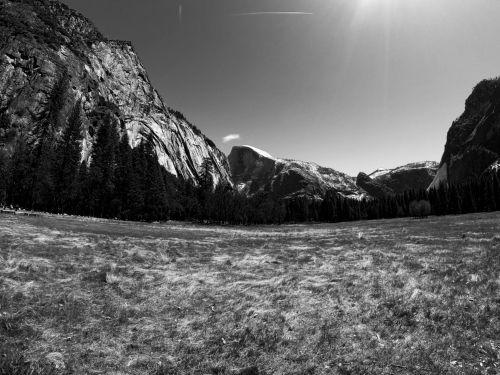 Yosemite Field