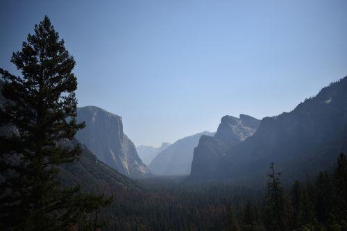 josemito nacionalinis parkas,gamta,kraštovaizdis,Kalifornija,usa,Nacionalinis parkas,medžiai,natūralūs akmenys,Rokas