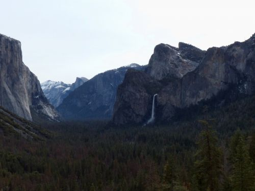 Yosemite Scenic Landscape