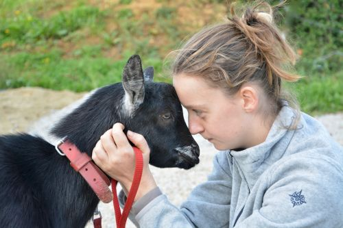 young girl young woman goat complicity