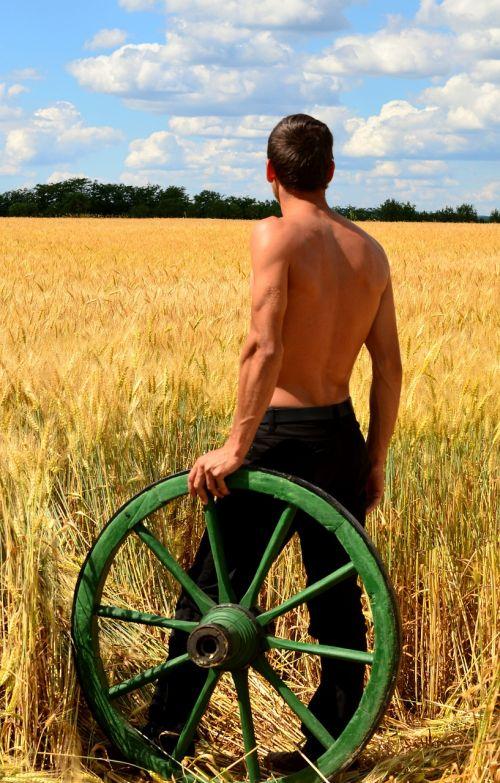 young men peasant carts wheat