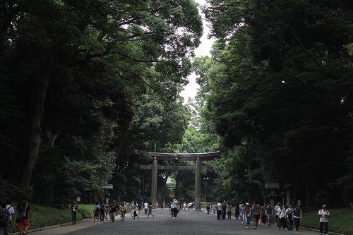yoyogi park  park  japan