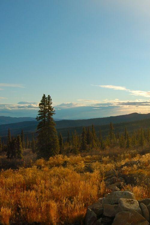 yukon st elias mountains mountain top