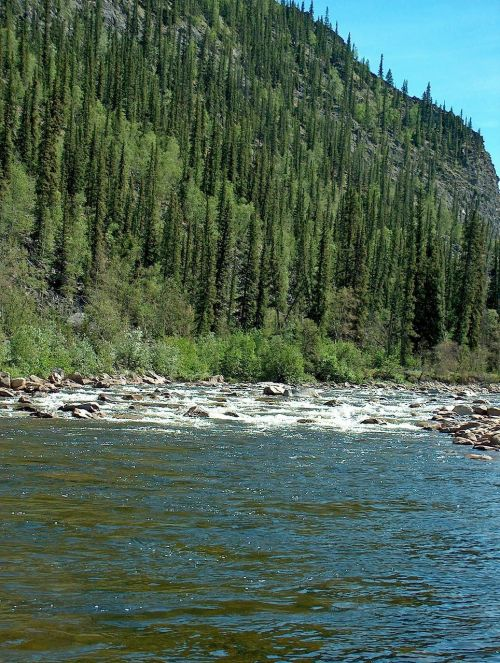 yukon river alaska landscape
