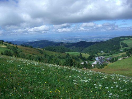zähringer hof münstertal rhine valley
