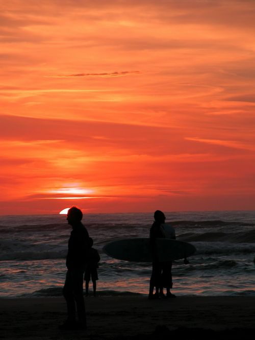 zandvoort sea netherlands