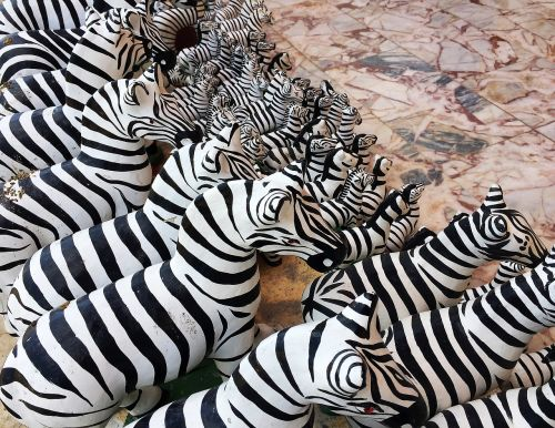 zebra pattern natural