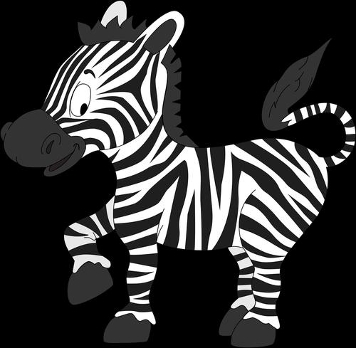 zebra  animals  cute