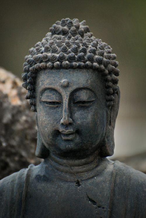 zen buddha reflection