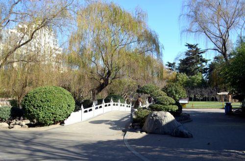 Zijinshan Park (a)