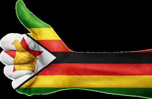 zimbabwe flag hand