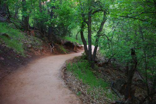 zion national park path national park