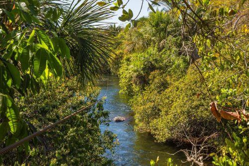 zipline rio nature