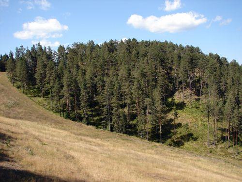 zlatibor serbia mountain