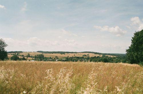 Gold Fields In July