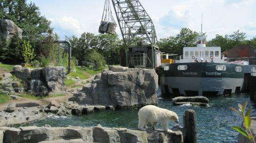zoo hannover adventure zoo yukon bay