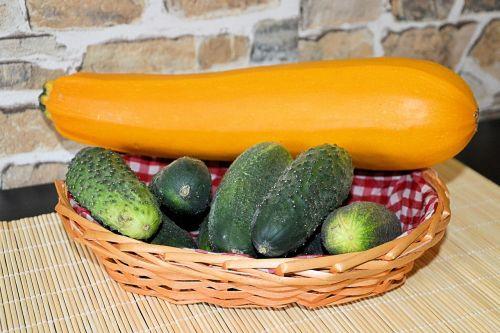 zucchini cucumbers einleggurken