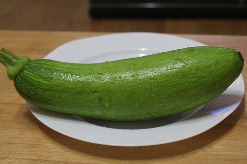 zucchini  plants  pumpkin