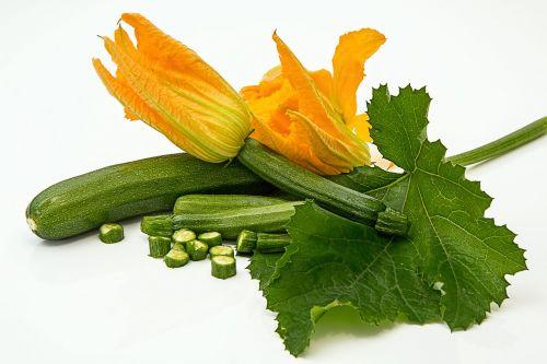 zucchini courgette squash